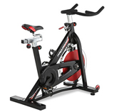 ProForm 290 SPX Indoor Cycle